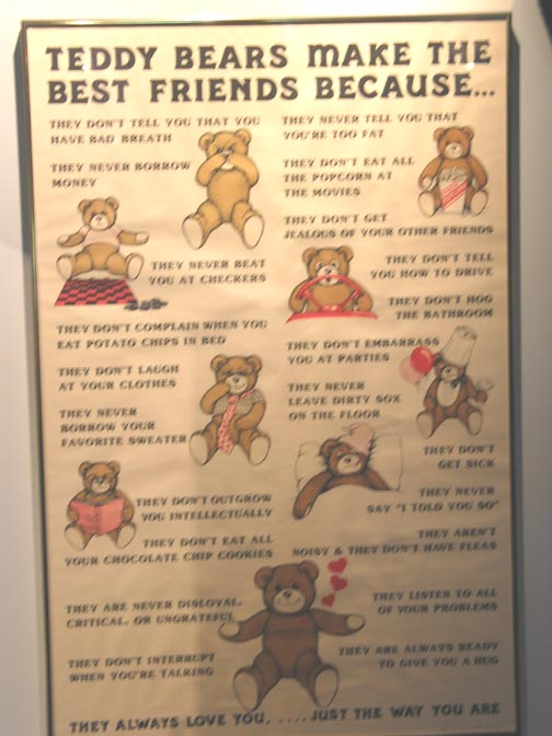 Poster Showing All The Reasons You Should Like Teddy Bears